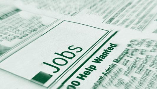 Proav Jobs